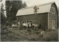 Joh Stokes in horse-drawn wagon in front of barn