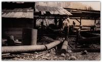 Men working at unidentified sawmill