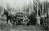 "Finnish farmers taking in hay crop on the Rauma farm with horse ""Polle"""