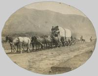 Horse-drawn wagons