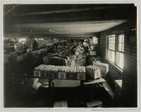 Interior view of Co-operative Growers Packing House